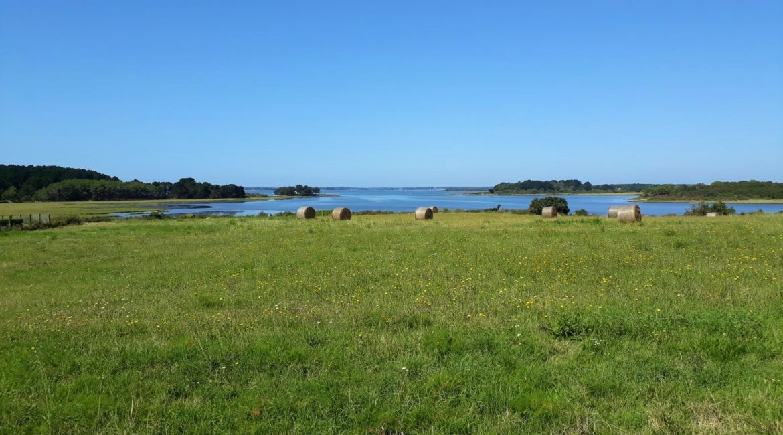 Golfe du Morbihan à l'horizon